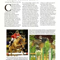 Clermark Equestrian About